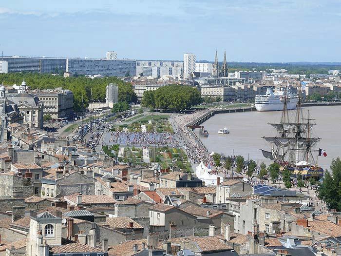 taxi animaux acceptés à Bordeaux
